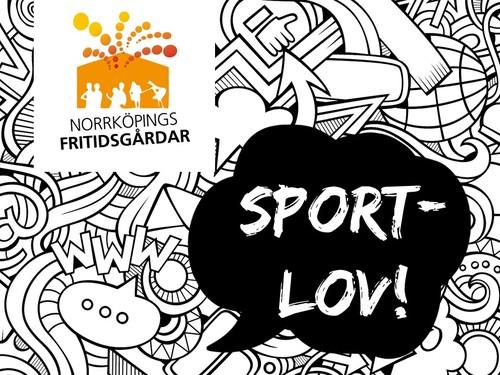 Sportlov med Norrköpings fritidsgårdar!