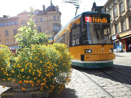 Spårvagnsguidning - Stadens årsringar 2019